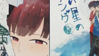 【 素敵な同人誌 13 】<br>雨夜の星のラブソング(めっけ様 / たじたじ)